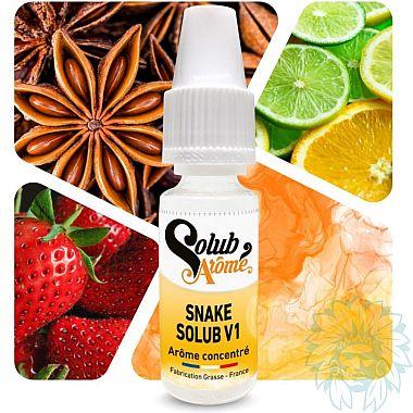 Arôme concentré Solubarome Snake V1