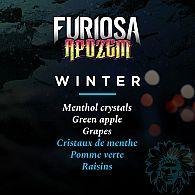 Arôme Winter Apozem Furiosa